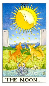 The Tarot School: Moon-Hermit Birth Cards